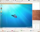 Win 7 pod Ubuntu 8.10 x86_64